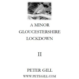 A Minor Gloucestershire Lockdown - II