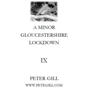 A Minor Gloucestershire Lockdown - IX