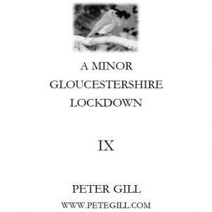 A Minor Gloucestershire Lockdown - IX